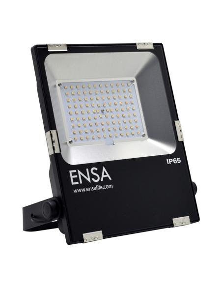 ENSA Professional 50W LED Flood Light (3000K) - LFL-B50-W