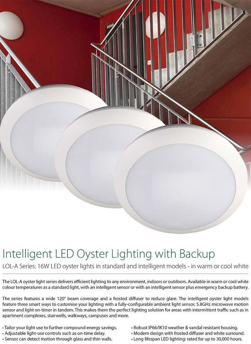ENSA LOL-A Series Oyster Lights Datasheet (PDF)-11.jpg